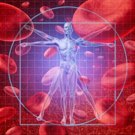 Blood-Cells