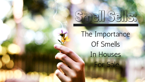 Smell Sells_